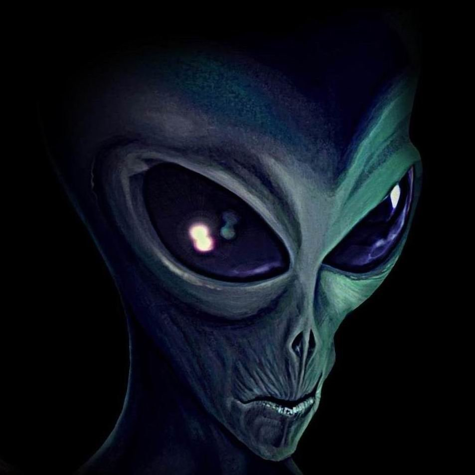 Avatar ID: 113465