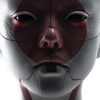Avatar ID: 123607