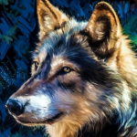 Sub-Gallery ID: 3651 Wolves