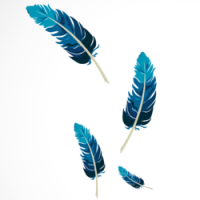 Preview Feathers