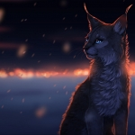 Avatar ID: 15902