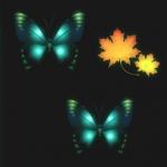 Avatar ID: 16548