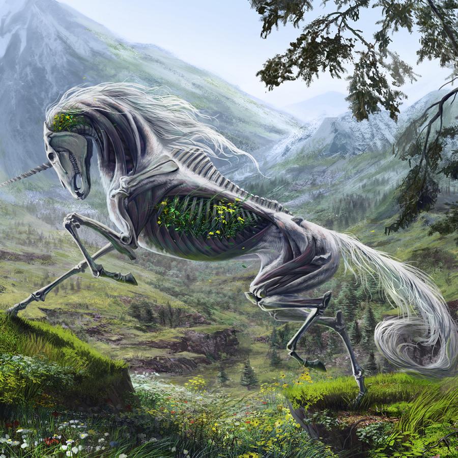 Avatar ID: 166901