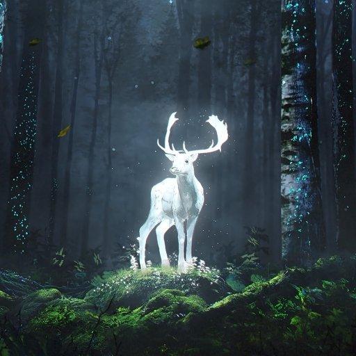 Avatar ID: 167305