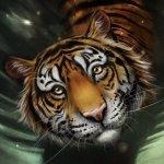Avatar ID: 182208