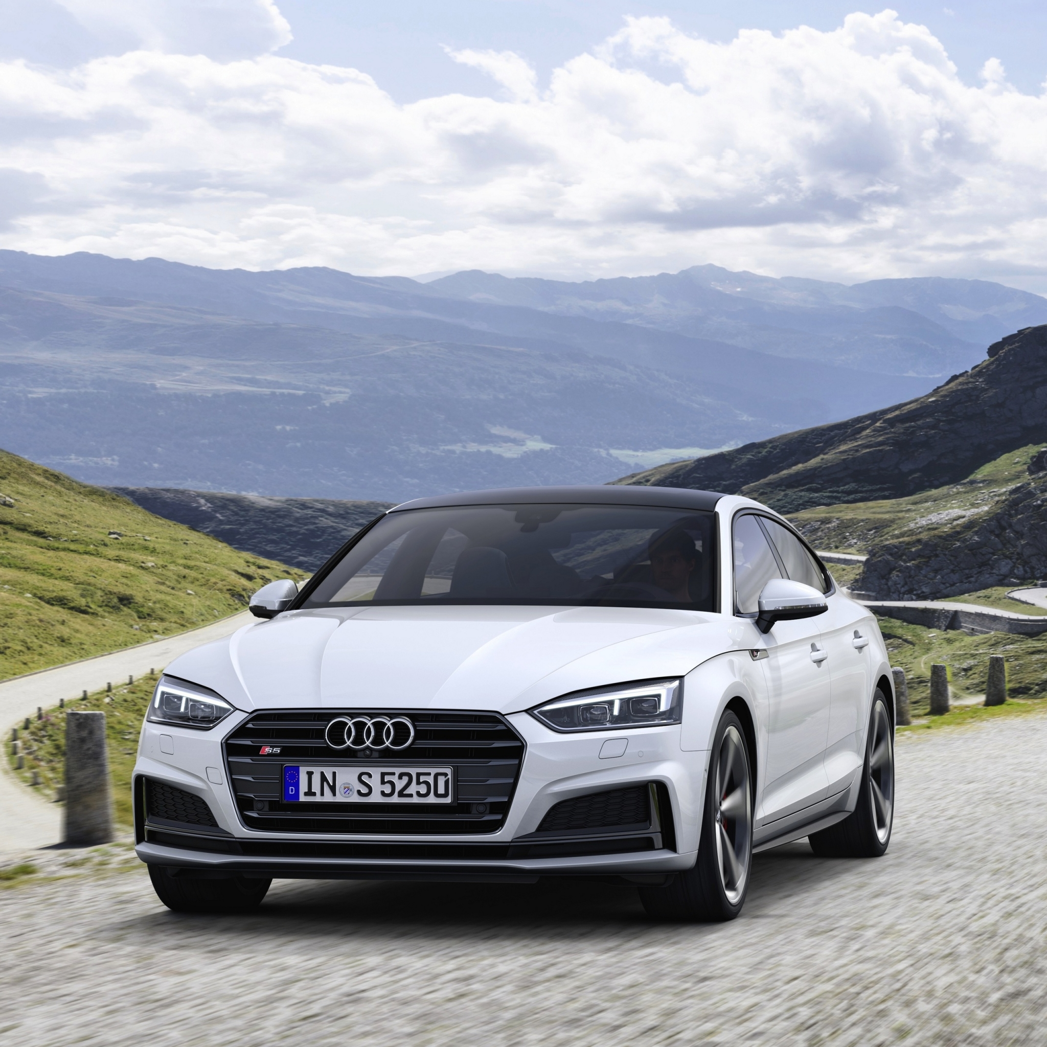 Audi A5 Forum Avatar | Profile Photo - ID: 188222 - Avatar Abyss