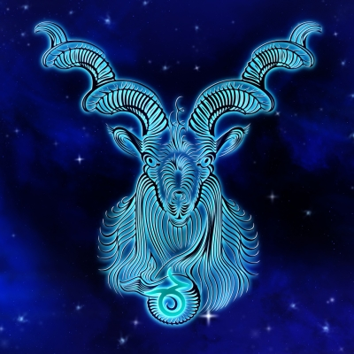 Avatar ID: 197558