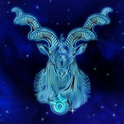 Avatar ID: 200958
