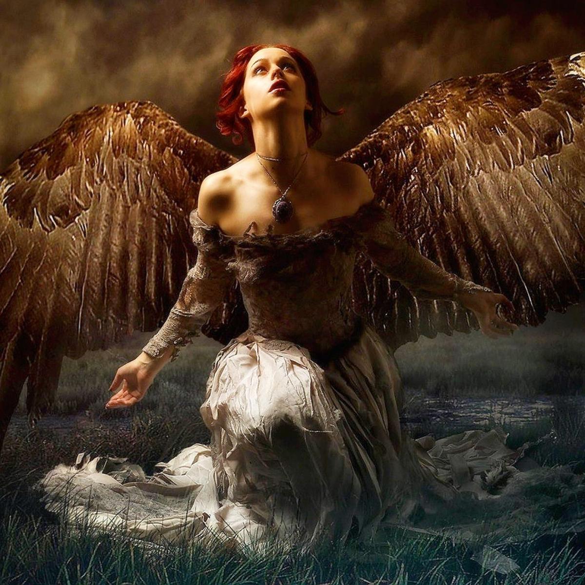 Падший ангел лучшие картинки том какими