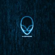 Avatar ID: 204657