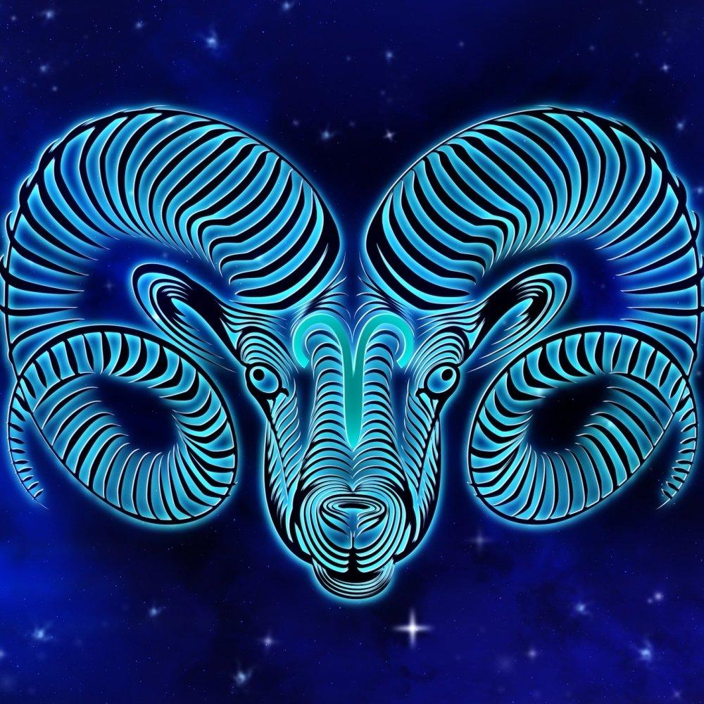 Avatar ID: 207737