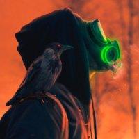 Avatar ID: 215258