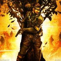 Avatar ID: 221167