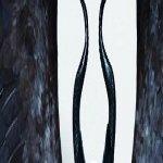 Avatar ID: 22752
