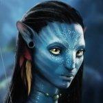 Avatar ID: 22780