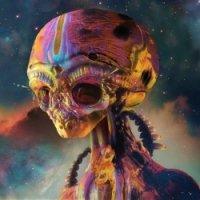 Avatar ID: 236017