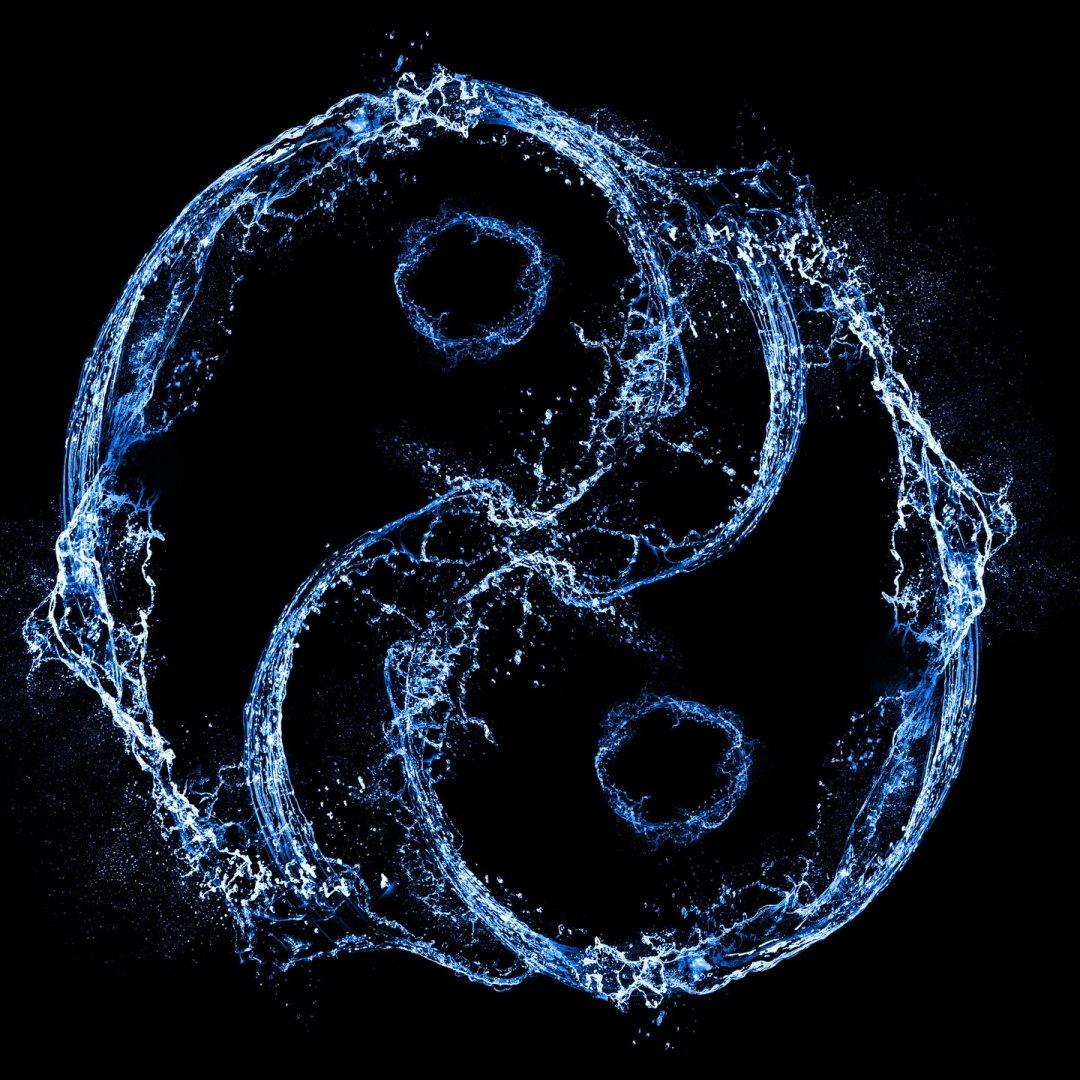 Avatar ID: 242108