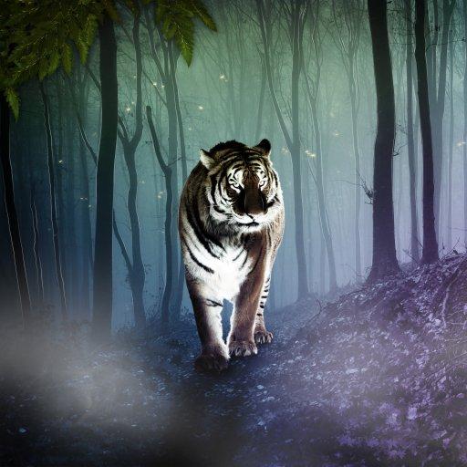 Avatar ID: 247362
