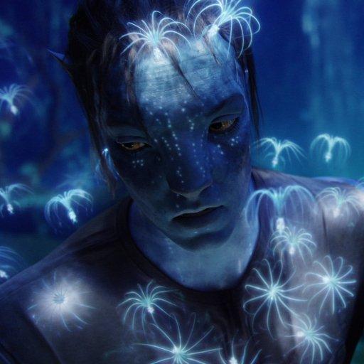 Avatar ID: 286799