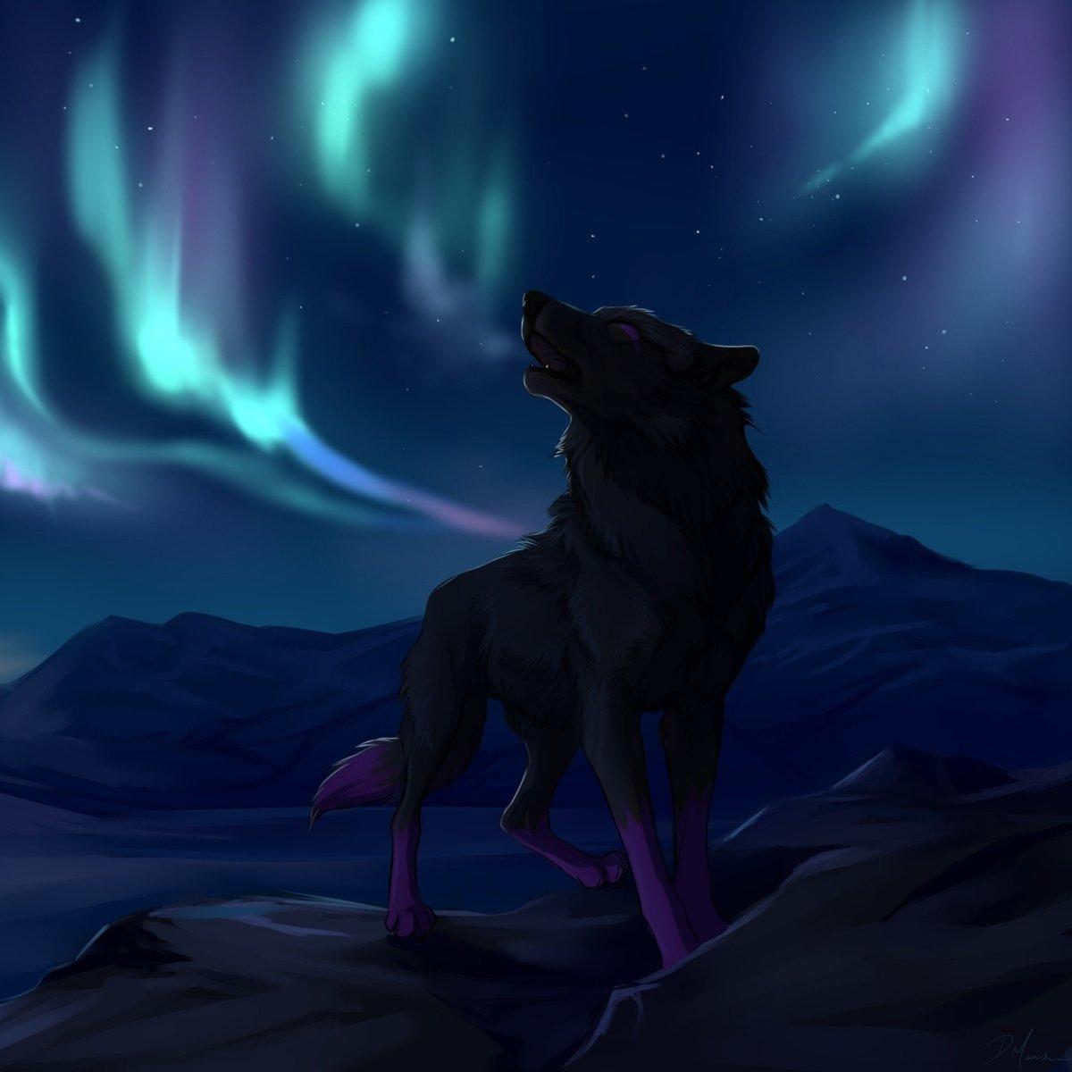 Avatar ID: 296026