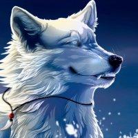 Avatar ID: 300223