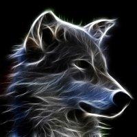 Avatar ID: 300411
