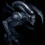 Avatar ID: 36271