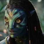 Avatar ID: 40657