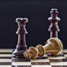 Chess Forum Avatar   Profile Photo - ID: 48117 - Avatar Abyss