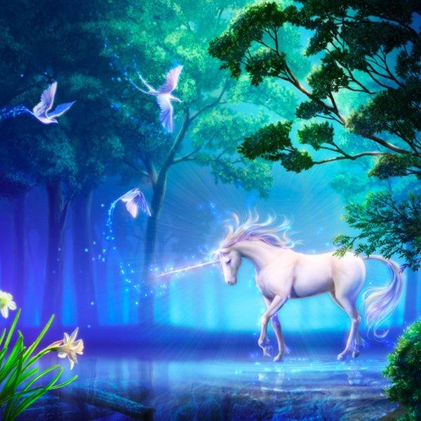 Avatar ID: 62915