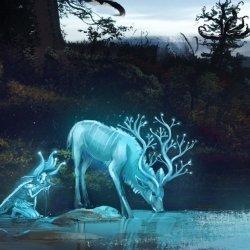 Avatar ID: 63933