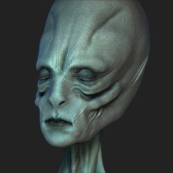 Avatar ID: 65570
