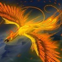 Avatar ID: 66657