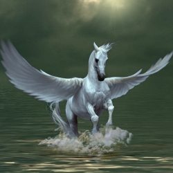 Avatar ID: 68445