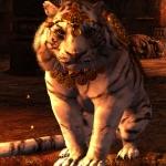 Avatar ID: 79916