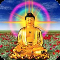 Avatar ID: 80151