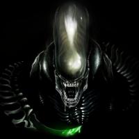 Avatar ID: 80959