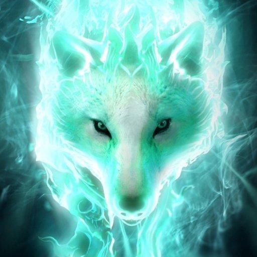 Avatar ID: 81119