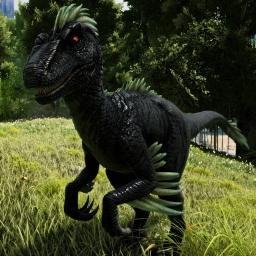 Avatar ID: 83888