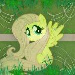 Avatar ID: 87194
