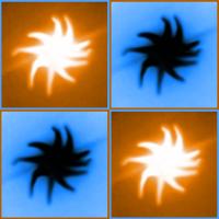 Avatar ID: 95169
